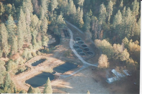 Aerial View Kemoo Trout Hatchery